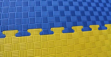 Купить спортивные гимнастические маты ЕВА ласточкин хвост в Украине