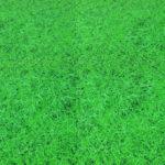 Модульное напольное покрытие под траву Толщина 2 см